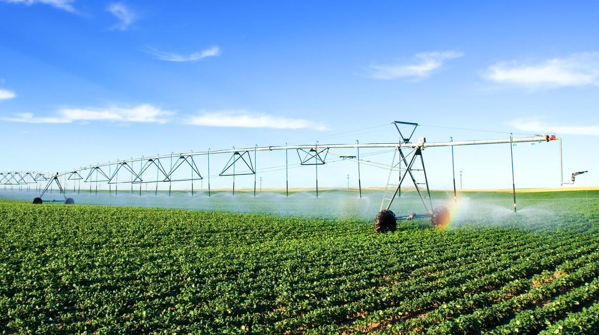 Soil Fertility Management